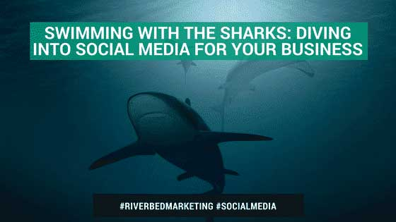Swimming With The Sharks: Diving Into Social Media For Your Business